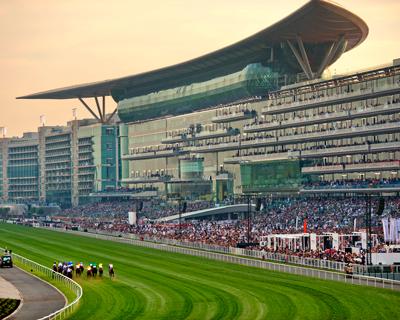 race-course